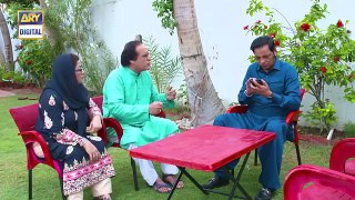 Bulbulay Se 2  Epi 14  13th August 2019  ARY Digital Drama