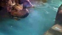 의왕출장안마 -후불1ØØ%ョO7OV5222V6739{카톡ZF66} 의왕전지역출장마사지 의왕오피걸 의왕출장안마 의왕출장마사지 의왕출장안마 의왕출장콜걸샵안마 의왕출장아로마의왕출장샵◠き∯