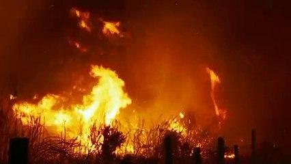 """Tráiler """"O que arde"""" dirigida por Oliver Laxe. Estreno en Francia el 4 de septiembre."""