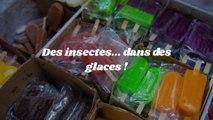 Une ONG dénonce la présence de résidus d'insectes dans des glaces artisanales