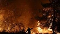 El fuego arrasa la reserva natural de la isla griega de Eubea