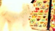 의왕출장안마 -후불1ØØ%ョO7OW5222W6739{카톡CS69} 의왕전지역출장마사지 의왕오피걸 의왕출장안마 의왕출장마사지 의왕출장안마 의왕출장콜걸샵안마 의왕출장아로마 의왕출장の≒≣