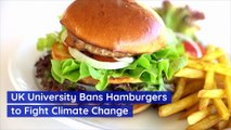 UK University Bans Hamburgers to Fight Climate Change