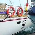 L'escale niçoise du voilier de WWF pour sensibiliser à la pollution plastique en mer