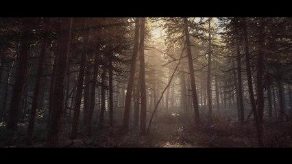 Blair Witch - Promenons dans les bois en 4K