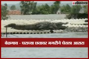 A crocodile lands on roof of a house in flood affected Belgaum