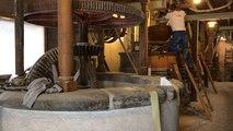Dans les coulisses de fabrication de la farine