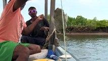 Kenya : l'archipel de Lamu menacé par un projet de centrale à charbon