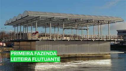 Roterdã abriga a primeira fazenda leiteira flutuante do mundo