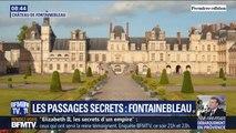 Découverte du château de Fontainebleau, demeure de quatre rois et deux empereurs