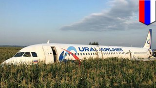Hero pilot makes crash landing after bird strike in Russia