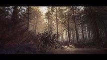 Blair Witch - Une promenade en 4K à travers les bois