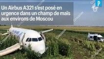 Russie : un avion de ligne atterrit dans un champs de maïs