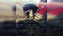 Yangından kurtarılan kaplumbağanın suyla buluşma anı