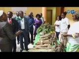 RTG/Découverte de plusieurs variétés de produits gabonais au festival agro-sylvo-pastoral et halieutique de Ntoum