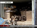 EXCLUSIVE: Chinoy tagged in black coral smuggling