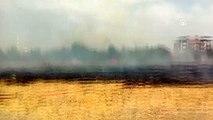 Malatya'da otluk alanda yangın