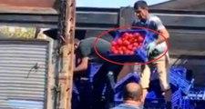 İBB'den, kasa kasa domatesi çöpe atan pazarcılarla ilgili açıklama: Cezası kesilmiştir