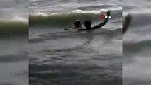 Köpek denize giren kişinin boğulduğunu sandı, kurtarmaya çalıştı
