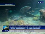Dead corals spotted as Tubbataha Reef damage reaches 4,100sqm