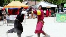 HÉRAULT - Retour en images sur la 2ème fête des chevaliers d'Hérépian