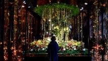 Brüksel çiçek açtı: Flowertime festivali başladı