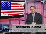 Teditorial: Breeding is best