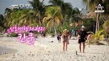 칸쿤 해변을 달리는 한 쌍의 치와와 & 김지민-크리스티안 부부(?)