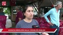 Adana'da biberin salça yolculuğu başladı! Fiyatlar tırmanabilir