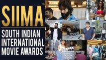 Siima 2019 Awards Tollywood Winners Full List    Filmibeat Telugu