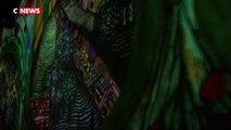 Paris : succès de l'exposition sur Klimt de l'atelier des lumières