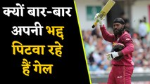 West Indies batsman Chris Gayle again dismisses retirement news, Know Why  | वनइंडिया हिंदी