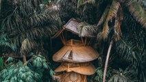 Une spectaculaire cabane en bambou dans la jungle indonésienne est à louer