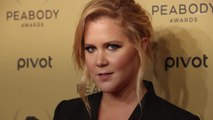 "Amy Schumer Had the Best Response to a Commenter Who Asked How She'd ""Cope"" If Her Son Had Autism"
