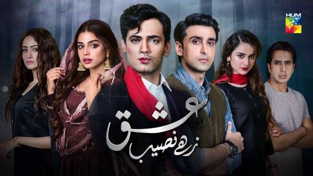 Ishq Zahe Naseeb Episode #10 Promo HUM TV Drama