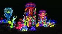 İtalya'da ilk kez düzenlenen fener festivali izleyenleri büyüledi