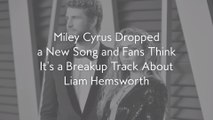 Miley Cyrus Dropped a New Song and Fans Think It's a Breakup Track About Liam Hemsworth