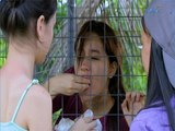 Prima Donnas: Huwag Kang Susuko by Golden Cañedo (Prima Donnas OST)