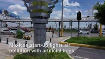 Mexican start-up fights air pollution with artificial trees