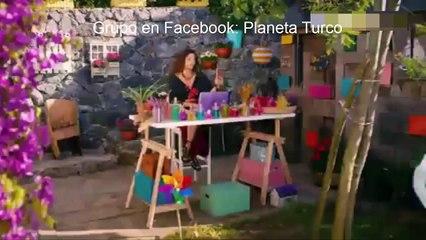 Pajaro Soñador Idioma Español Capitulo 171