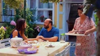 Pajaro Soñador Idioma Español Capitulo 39