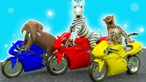 Aprenda los Colores del nombre de Animales y -elefantes con animales salvajes - Video para Niños