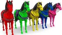 Animales para niños - Aprende los colores con animales de elefante caballos en la granja para niños
