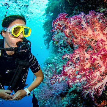 Best Things to Do in Hurghada - Hurghada Excursions