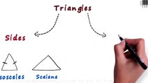 What are the Different Types of Triangles -