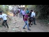 snake rescue gujarat