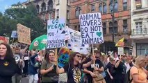 Angry London vegans march from Trafalgar Square to Westminster