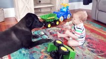 Adorable Babies Playing With Dogs  Funny And Fails Videos