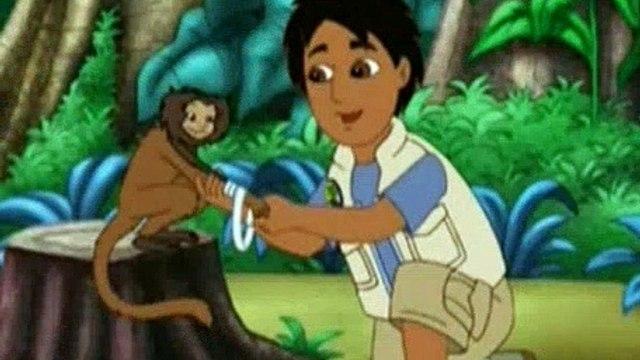 Go Diego Go Season 2 Episode 3 Little Kinkajou Is in Beehive Trouble
