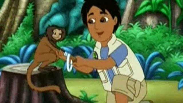 Go Diego Go Season 2 Episode 3 Little Kinkajou Is in Beehive Trouble